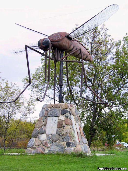 Так, у самого большого комара-памятника, расположенного в канадском.